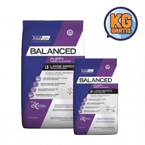 VitalCan Balanced Cachorro Raza Grande 20 kg + 3 Kg Gratis