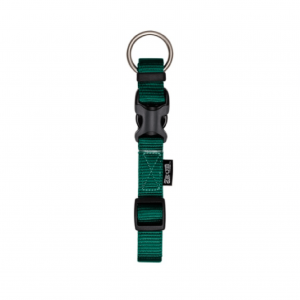Zeus Collar XL  2.5cm x42-60 largo ajustable