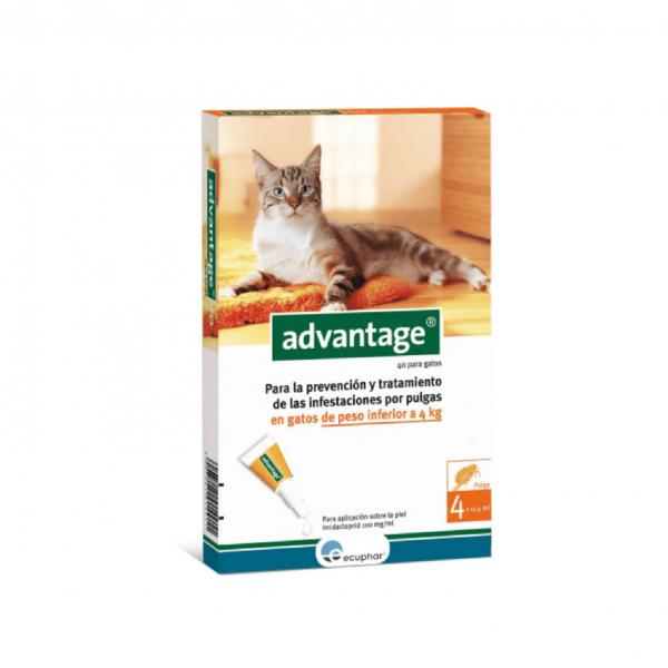 Pipeta Advantage G para Gatos - Hasta 4kg